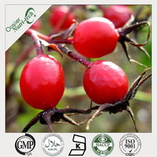Rose Hip Fruit Powder